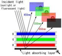 A colorful illustration of the way ChLCD technology works (Credit: Fujitsu)