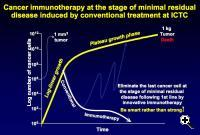 Graph depicting the growth of a tumor over time. Yellow line indicates growth of the tumor without therapy; the blue line, with chemotherapy; and the white line, with immunotherapy.