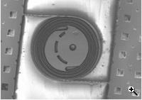 silicon surrounded by silicon coils (Credit: Stanford University)