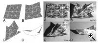 Views of the folding sheet in motion. (Source: Harvard School of Engineering and MIT)