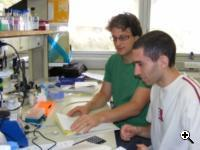 Dr. Sebastian Kadener (left) with his student, Uri Weissbein. (Source:  Hebrew University)