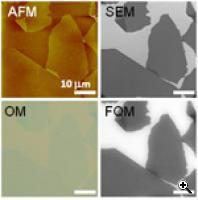 Images of graphene oxide sheets deposited on a SiO2/Si substrate (Credit: Northwestern University)