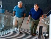 Joshua Sanes (right) and Jeff Lichtman, both professors of molecular and cellular biology at Harvard, have uncovered a mechanism by which exercise and calorie restriction work to improve healthy aging. (Credit: Rose Lincoln/Harvard Staff Photographer)