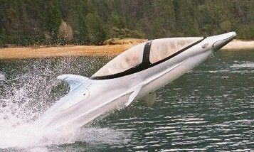 Dolphin Watercraft