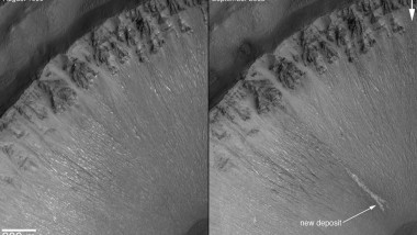 Water on Mars? Martian Life Next?