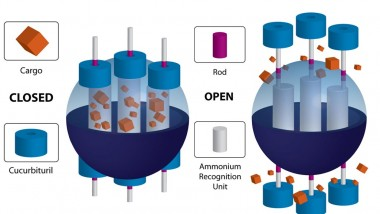 Nano Targeted Drug Delivery