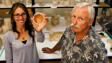 Anthrax and MRSA Killing Compound Discovered