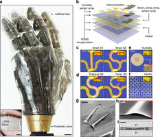 Artificial Skin That Senses and Stretches Like Human Skin
