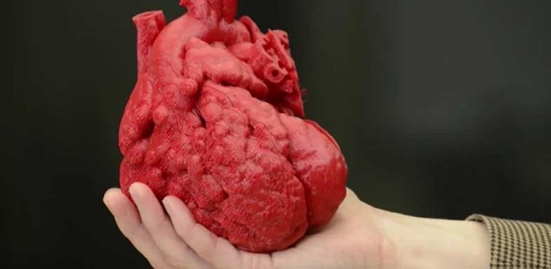 3D Printined Heart In Hand