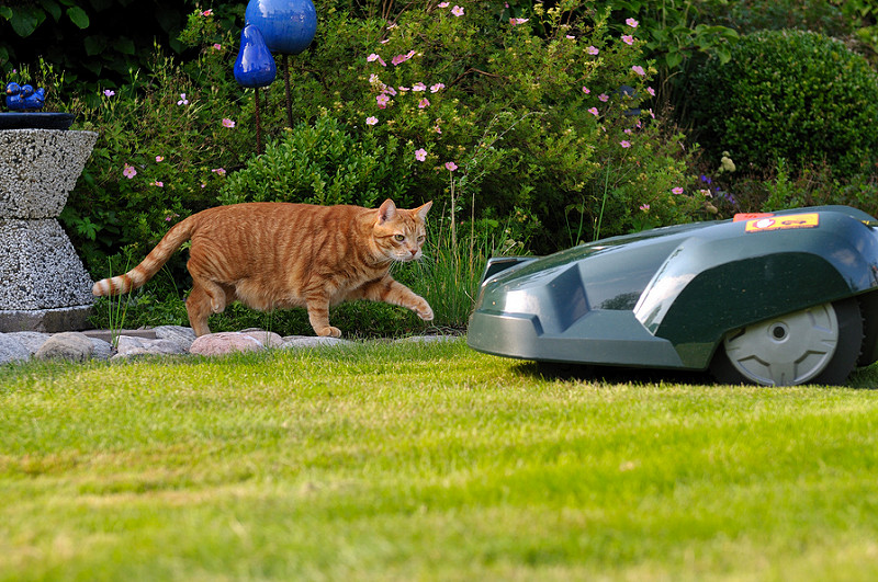The Future Of Lawn Mowers - TFOT