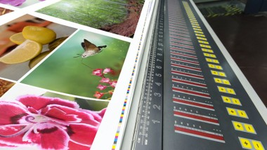 How the Print Industry is Focusing on Environmental Sustainability