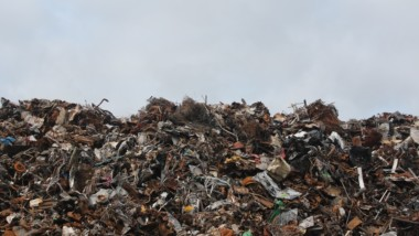Robots in Waste Management: What is There to Know?